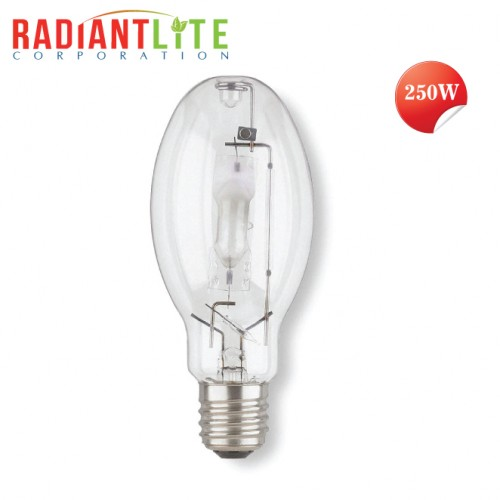 250Watt Metal Halide