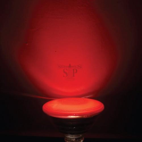 25W PAR38 CFL RED