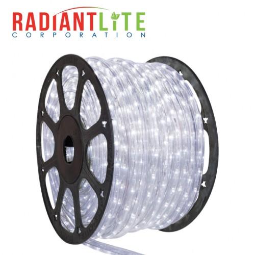 LED ROPE WHITE