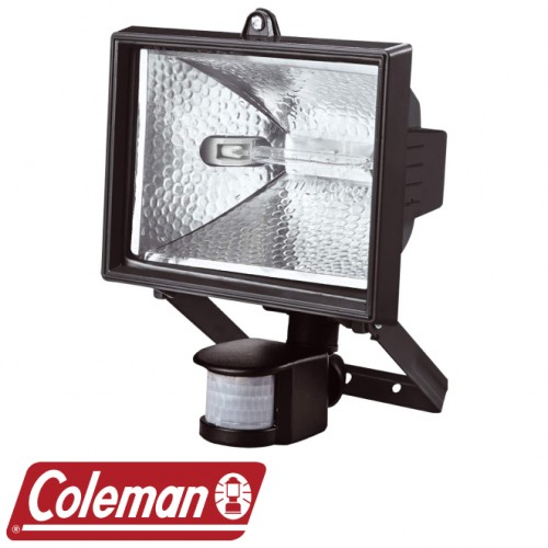 MOTION ACTIVATED 500W HALOGEN FLOOD