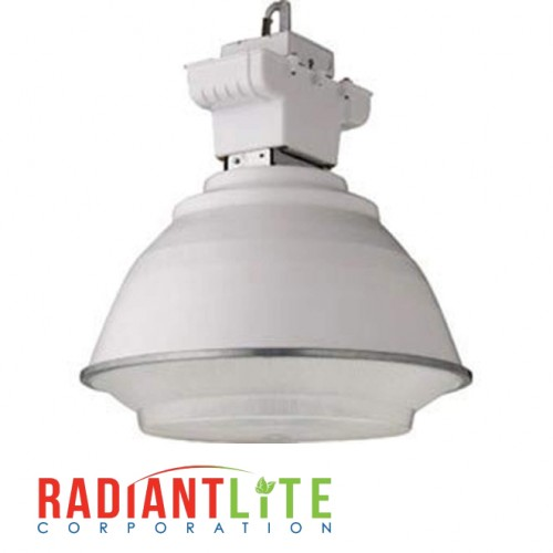 250W METAL HALIDE MULTI TAP