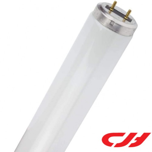 40W T12 REGULAR TUBE