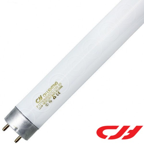 4FT 36W T8 ELECTRONIC TUBE