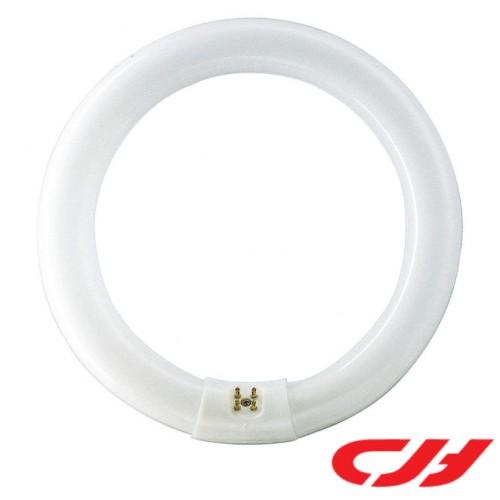 32W T9 CIRCULAR TUBE